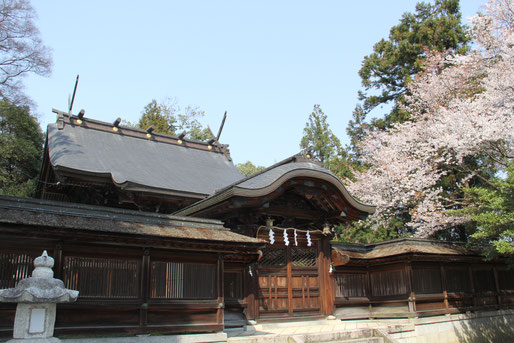 豊満神社本殿