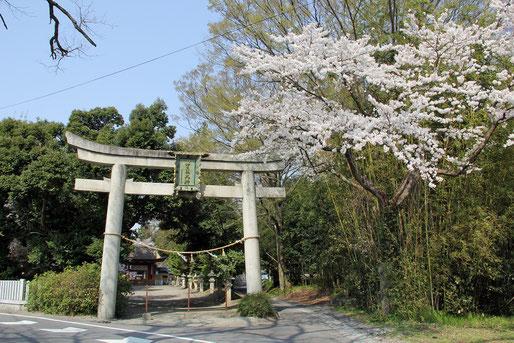 第二鳥居(参道)付近(神社境内より南へ約100m)