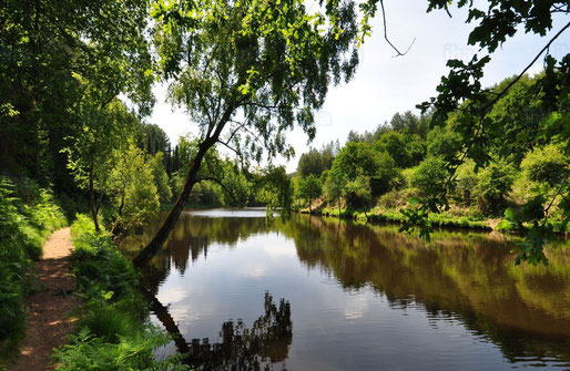 Brocéliande, Bretagne, Ile et vilaine