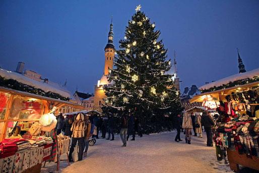 Tallinn, Estonia, viene realizzato da allora un grande albero di Natale in mezzo alla piazza e ai mercatini di Natale