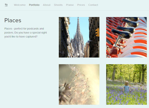 Website created by A Scribing Hand for Teresa Sumerfield Photography, powered by Squarespace.