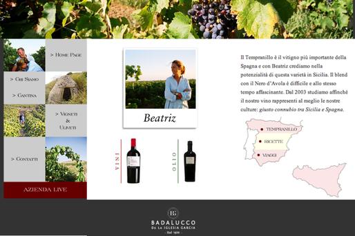 www.vinibadalucco.com