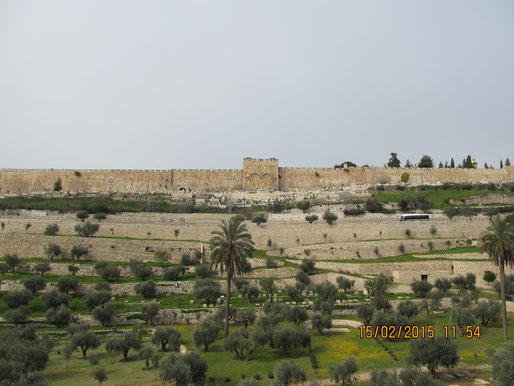 Долина Суда и врата Мессии