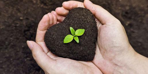 lurpe  earth vibes super soil