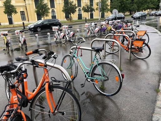 ウィーン、シェーンブルン、シェアサイクル、レンタルサイクル