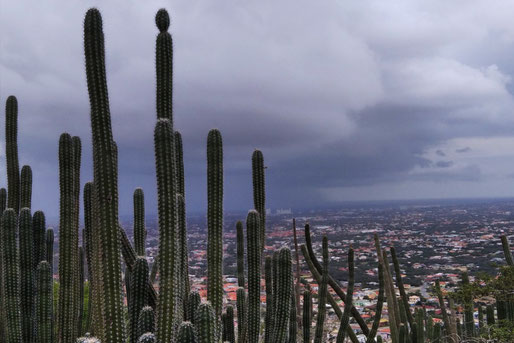 Storm coming up on Hooiberg and I am at the top - great!