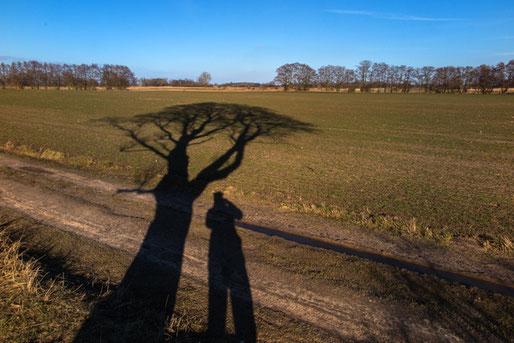 Anke Wolfert: Beim Nachmittagsspaziergang