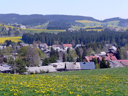 Blick über Hinterzarten. Foto: qwesy qwesy [CC BY 3.0 (https://creativecommons.org/licenses/by/3.0)]