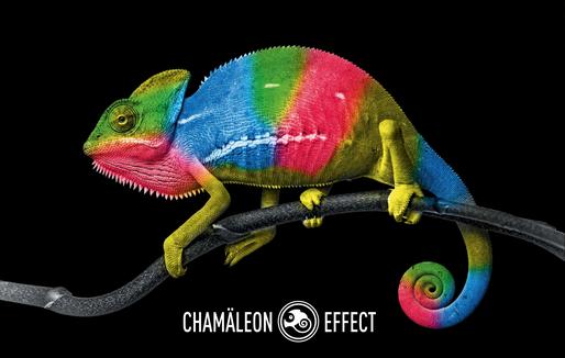 Chamäleon Effect-Flipflop Wand-Camaeleon Wandgestaltung