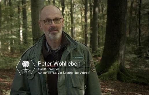 La vie secrète des arbres par Peter Wohlleben présenté à Arudy dans les Pyrénées Atlantiques -ACCOB