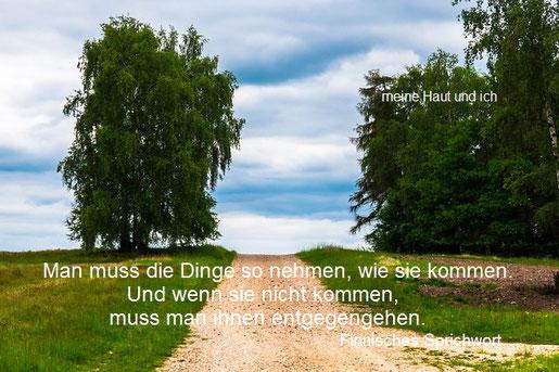 Schotterweg in der Natur, rechts und links Bäume, mit Text
