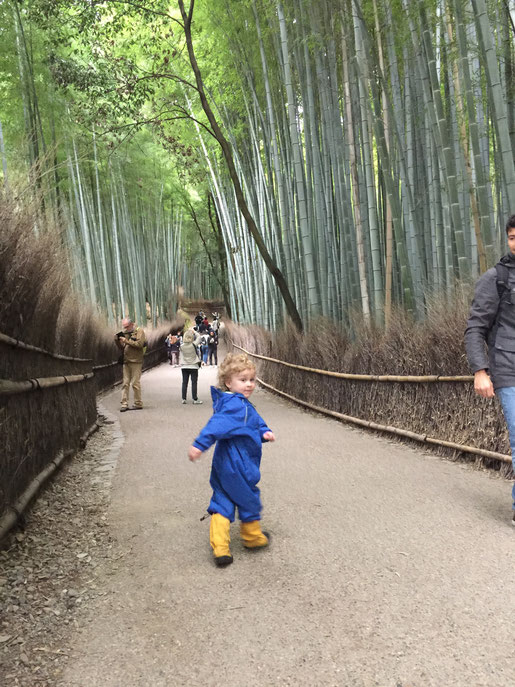 Kyoto - 7 Day Itinerary For Active Families with Small Kids - A Walk Through Arashiyama Bamboo Forest