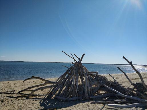 Art kiwi: scultures avec du bois trouvé sur les plages