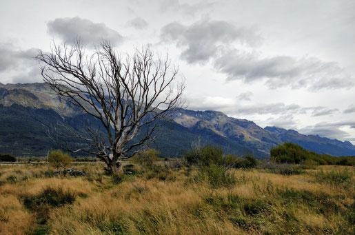 La plaine d'Isengard
