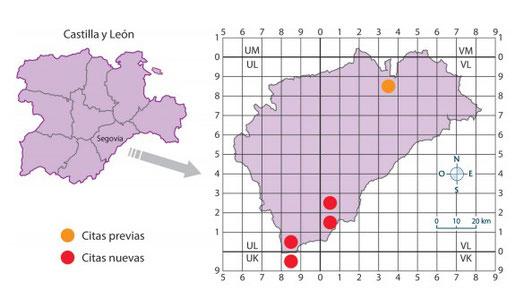 M. trifoliata en la provincia de Segovia, con indicación de presencia en cuadrículas UTM de 10X10 Km., elaborado a partir de las citas previas (Baonza et al., 2003), y las nuevas citas de las localidades halladas durante el desarrollo de este trabajo.