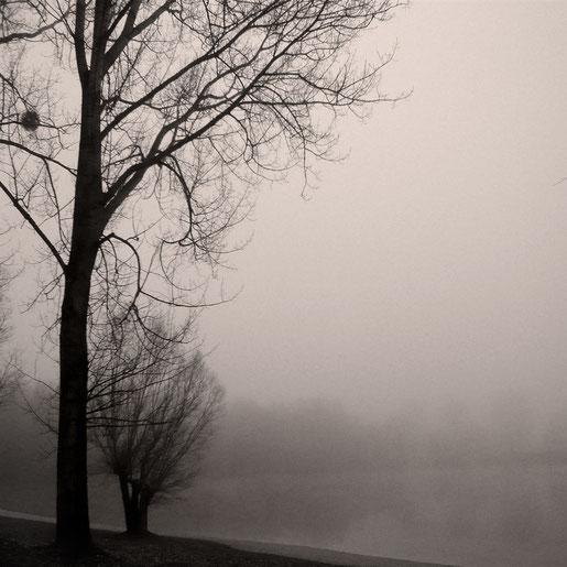 """""""Woods In Winter Landscape"""" Art Print von Lena Weisbek"""