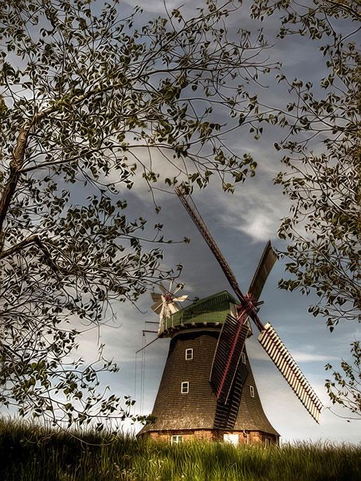 die holländische Mühle