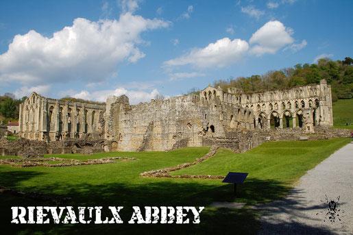 Rievaulx Abbey - Ruinen Fotos Teil 3 - Zebraspider DIY Anti-Fashion Blog