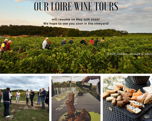 Loire-Wine-Tours-visit-Loire-Valley-vineyard-winery-cellar-wine-tasting-local-guide-Vouvray-Amboise
