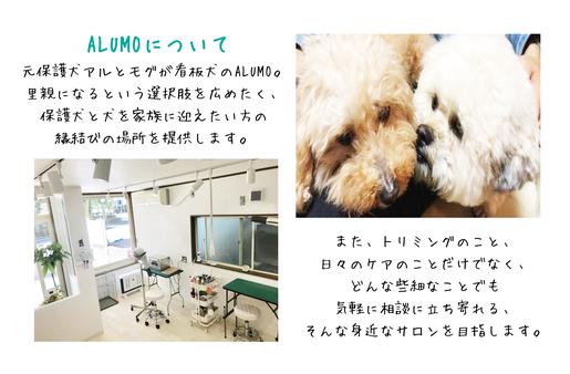元保護犬アルとモグが看板犬のALUMO
