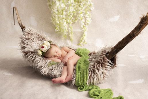 newborn op een blad