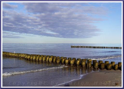 Ein kalter Januartag am Ahrenshooper Ostseestrand.