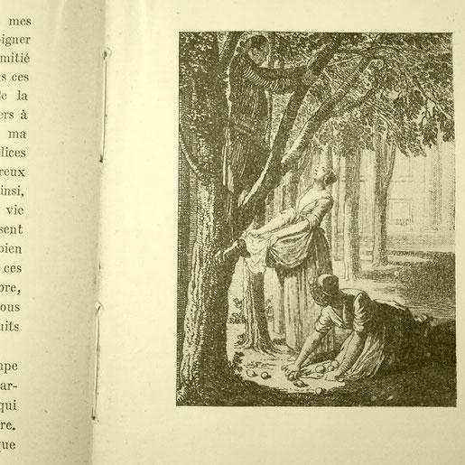 Les souffrances du jeune Werther, Goethe
