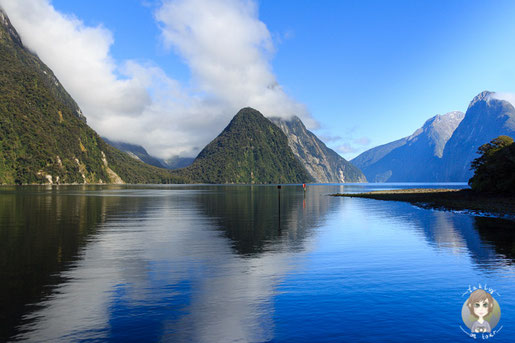 Bootstour auf dem Milford Sound - Foto Takly on Tour