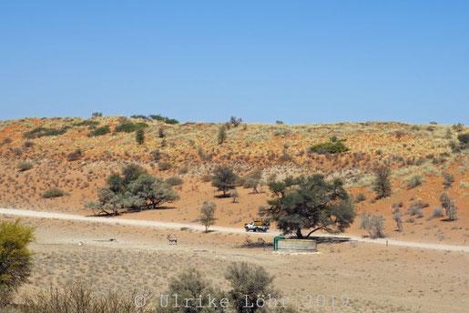 Strasse im Auob Tal