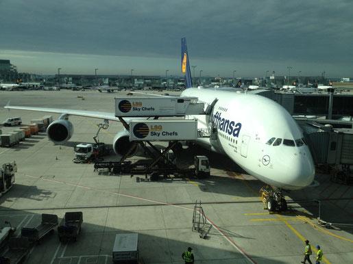 Los geht's - 11 Stunden Flug bis LAX (Foto: NP)