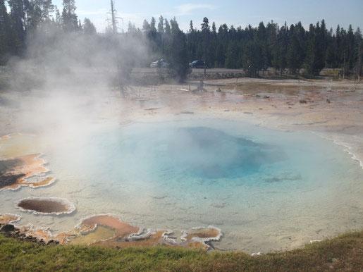Morning Glory Pool, Yellowstone (Foto NP)