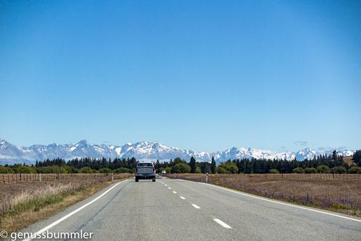 Mount Cook - Foto Ina von Genussbummler.de