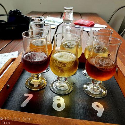Sea Cider: unser long flight mit sechs verschiedenen Cider-Sorten