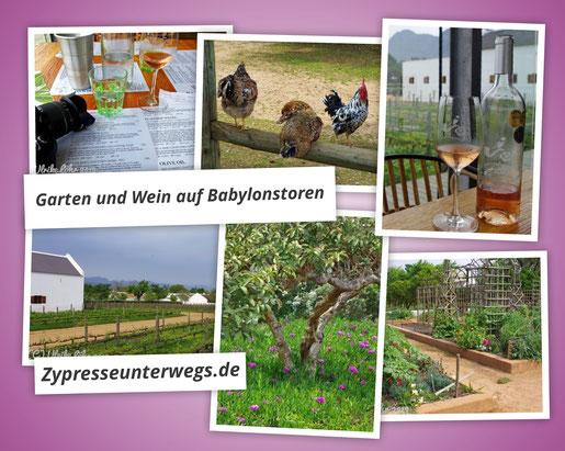 Gartenbummel und Weinverkostung bei Babylonstoren