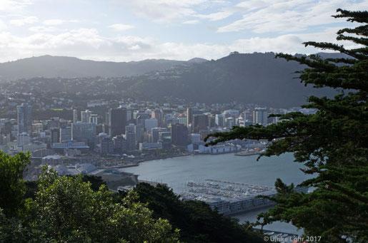 Wellington, vom Mount Victoria Lookout gesehen