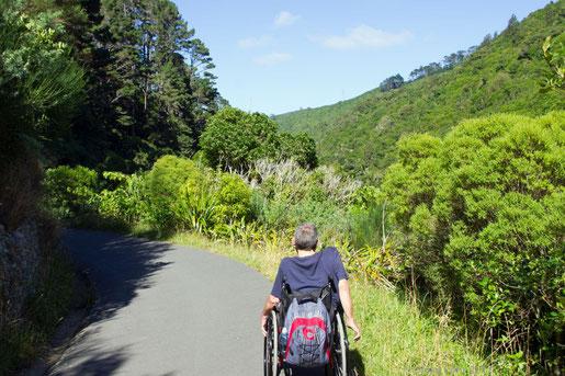 mit dem Rollstuhl in Zealandia unterwegs