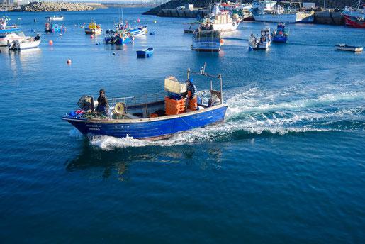 Fischerhafen von Sines (C)Travelworldonline