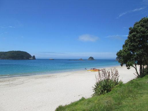 Strand kurz vor Cathedral Cove (Coromandel) - Foto Isis alias Paula Parkvogel