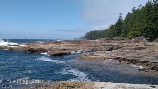 Verläuft an der Küste entlang: Der West Coast Trail