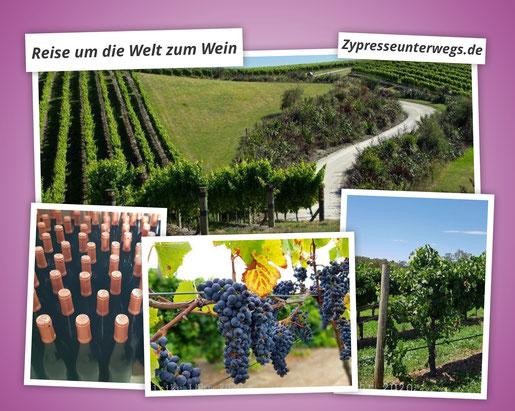 Reise um die Welt zum Wein