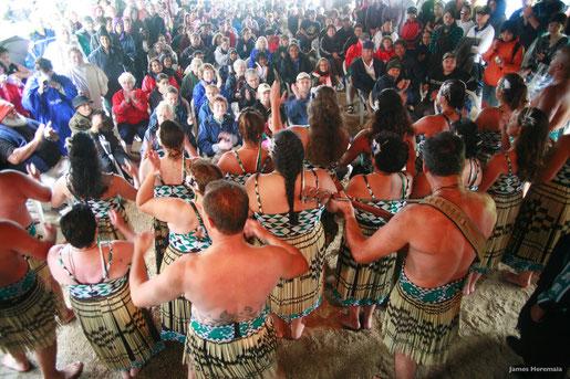 Waitangi, Northland  - (C) James Heremaia