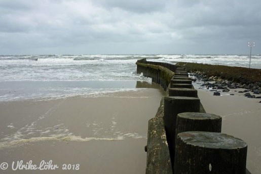 Die Nordsee als Heilmittel