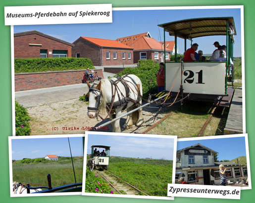 Spiekerooger Museumspferdebahn bei der Ankunft am Westend