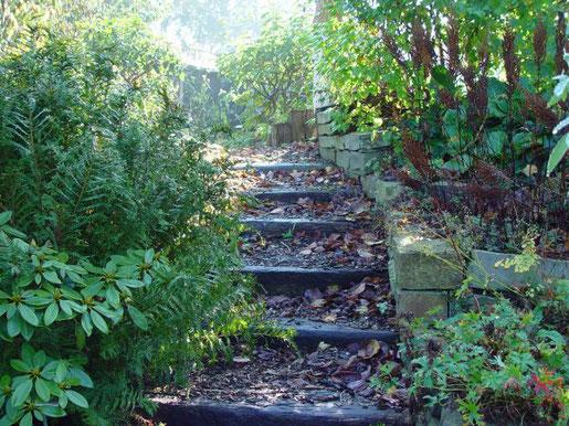 Von Gehwegen und Treppen sollte herbstliches Laub unbedingt entfernt werden, denn in Kombination mit Feuchtigkeit oder Frost wird es zu einer rutschigen Angelegenheit. Auf den Müll muss es allerdings nicht, sondern kann an anderer Stelle wichtige Aufgaben