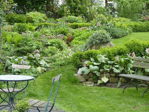 Hangflächen im Garten gelten als schwierig. Daher entscheiden sich viele Gartenbesitzer für die Terrassierung ihres Hanggrundstücks. Bei Arealen, die nicht aktiv genutzt werden sollen, können Hangflächen aber durchaus auch Hangflächen bleiben