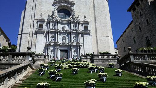 L'AGUICAT vol promoure el turisme responsable i de qualitat, i us convida a passar-vos per Girona a veure les flors i els seus monuments.