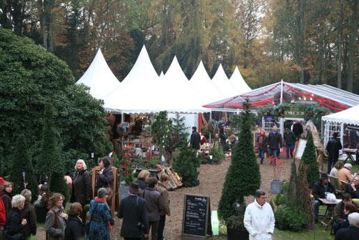 Bild: Weihnachtsmarkt 2015 mit Tannen und Buden