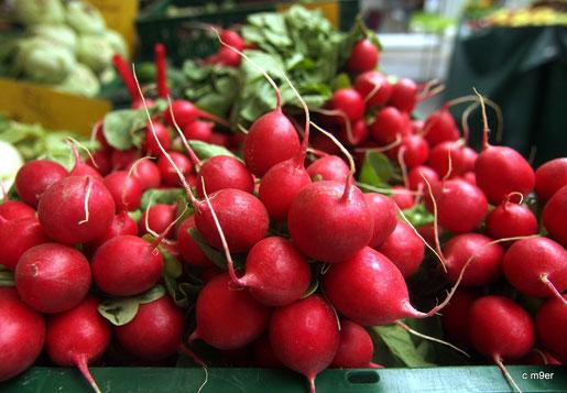 Rot leuchtende, knackige Radieschen, am Gemüsemarkt in Bamberg. Dahinter schimmert grüner Blattsalat.