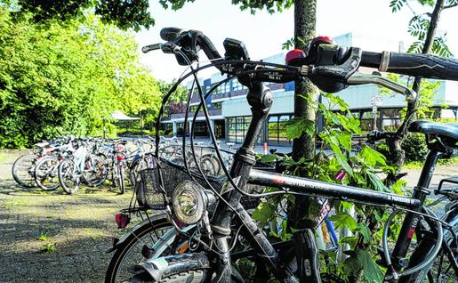 Wie hier am Goethe-Gymnasium gibt es zu wenig Fahrradständer, so dass einige Räder an Bäumen abgestellt werden müssen. Foto: B. Zilkens