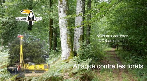 Attaques contre les forêts classées. Oloron Sainte Marie 64